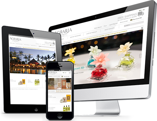 Los Angeles Web Design and Development Agency - LDA Interactive